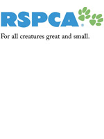 Rspca Knitting Patterns For Dogs : /Rspca knitted jumpers/ >> /rspca midleton cork horses/